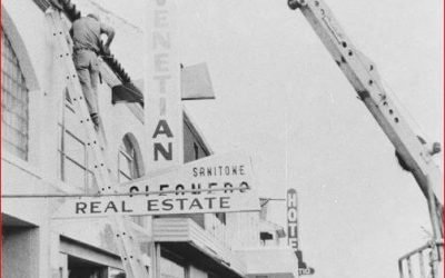 213, 215, 217 W. Venice Avenue: The Sarasota Bronx Building